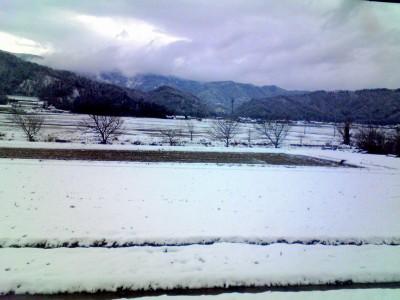 これは先週の上中近辺の景色。